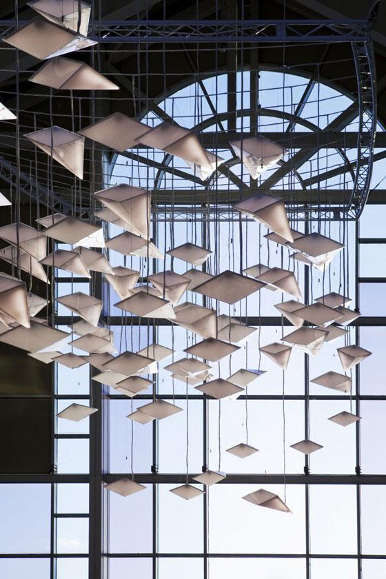 Flock of Birds Paul Nulty